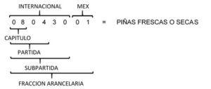 CLASIFICACIÓN ARANCELARIA DE LAS MERCANCÍAS